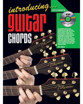 Introducing Guitar Chords - Teach Yourself How to Play Guitar