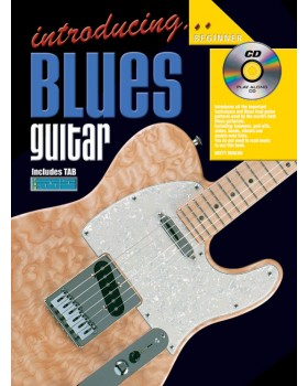Introducing Blues Guitar - Teach Yourself How to Play Guitar