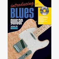 Introducing Blues Guitar