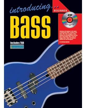 Introducing Bass - Teach Yourself How to Play Bass Guitar