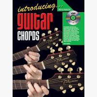 Introducing Guitar Chords