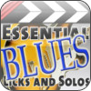 Essential Blues Guitar Licks & Solos